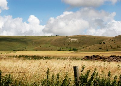 Road Bike Tour in Cotswolds, see White Horse of Pewsey