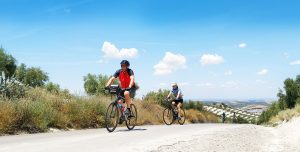 Cycle Trip in Andalucia