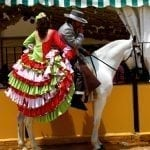 Feria and Fiesta, Bike Tour Andalucia, South Spain