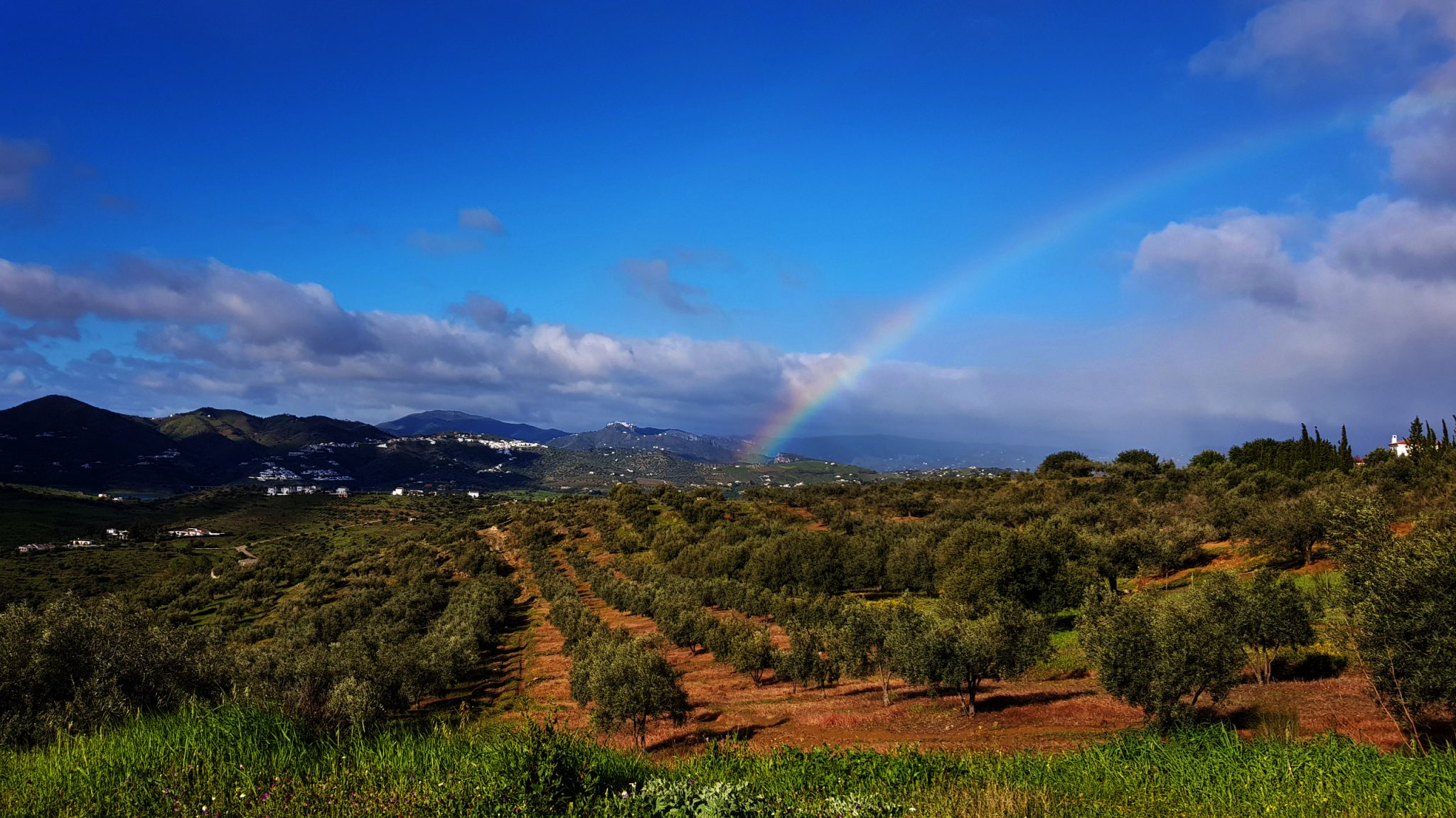 Bike Tours in the Axarquia, Andalucia