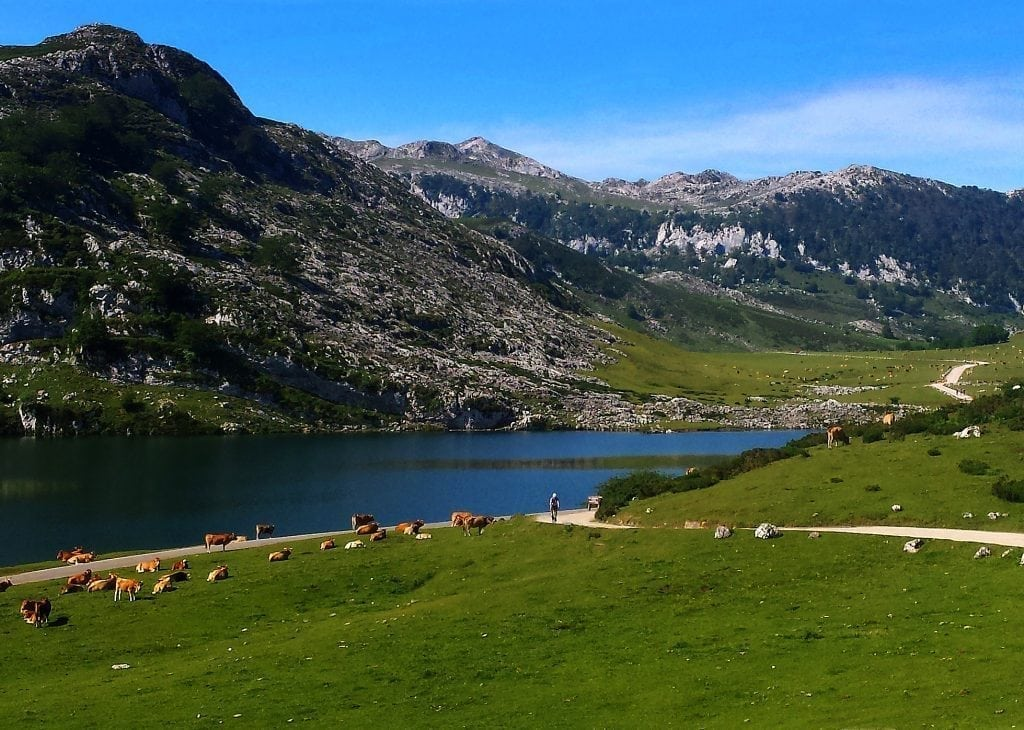 Road Bike Tour in North Spain, cycle Covadonga