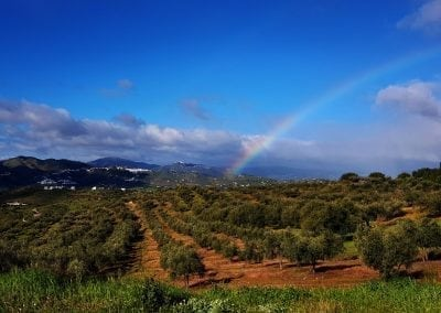 Road Cycling in Spain's Mediterranean Coast and Inland Andalucia