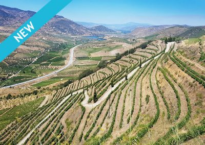 Douro Valley      €1,275            Portugal      7 DAYS