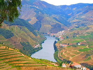Cycle Tour in the Douro Valley