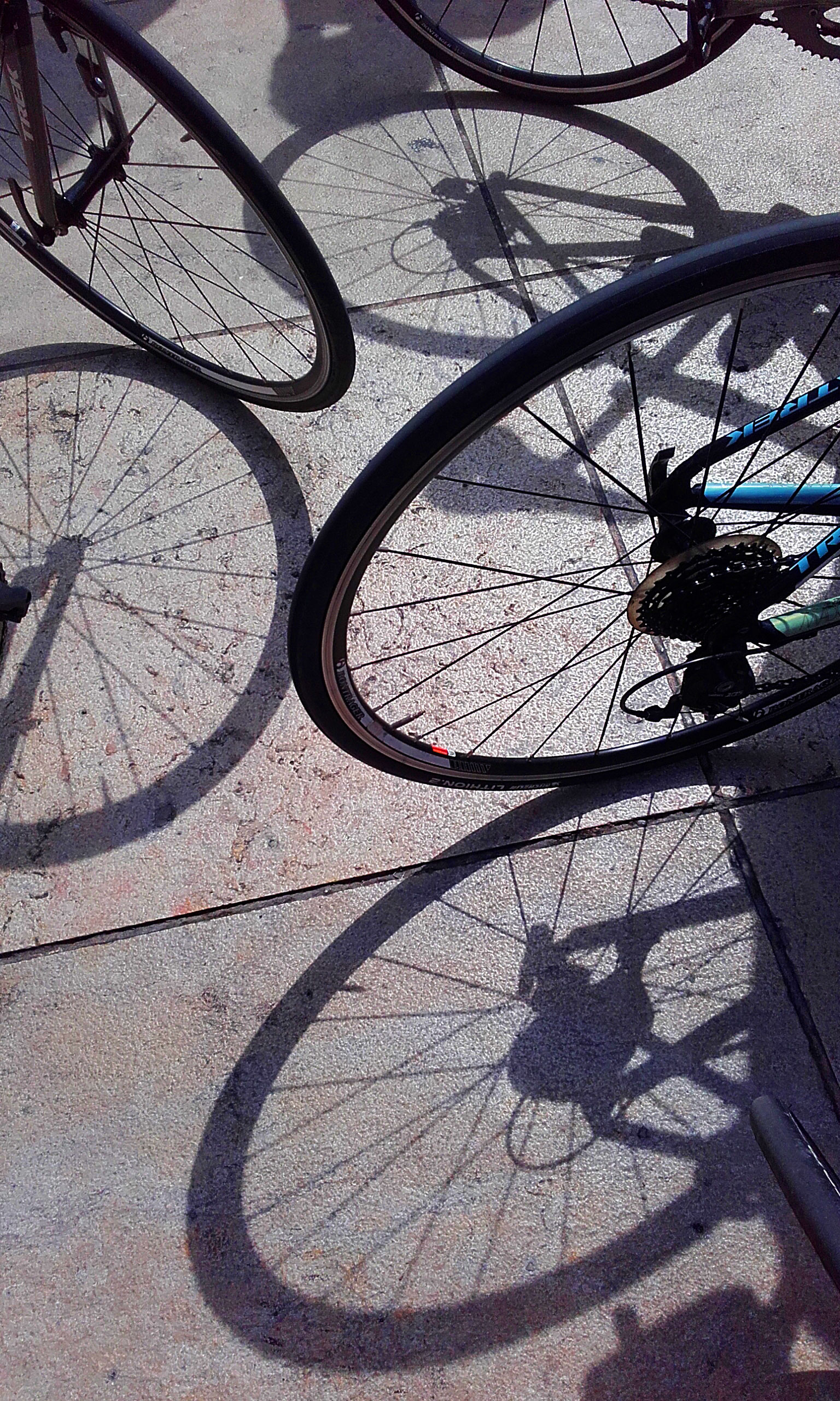 Cycling in a Group, How to do it