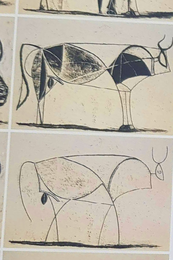 Picasso Sketch of Bull