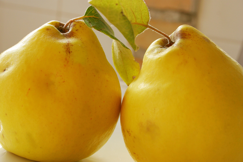Quince Fruit, a Unique Spanish Food to Try