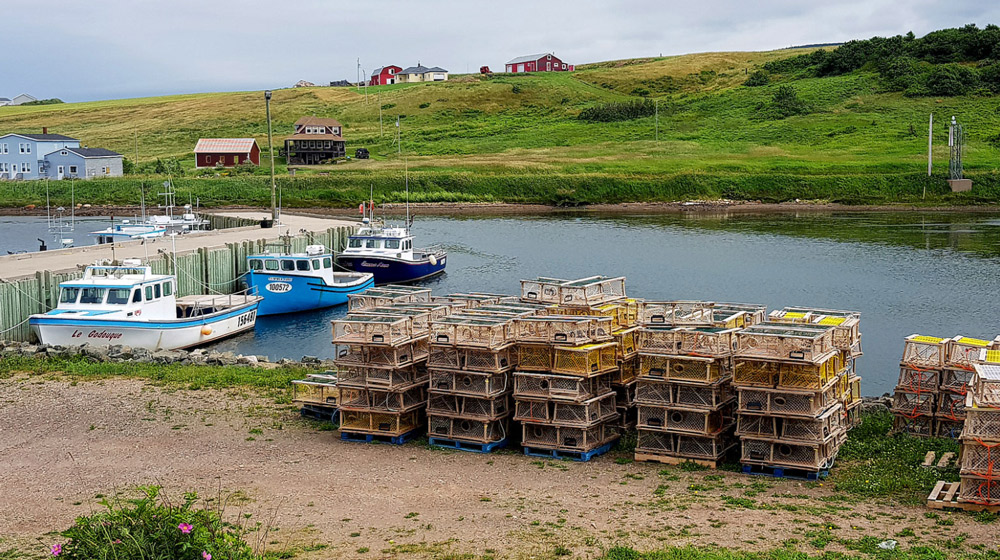 Maritime Canada's Best Books & Movies - Typical Fishing Village