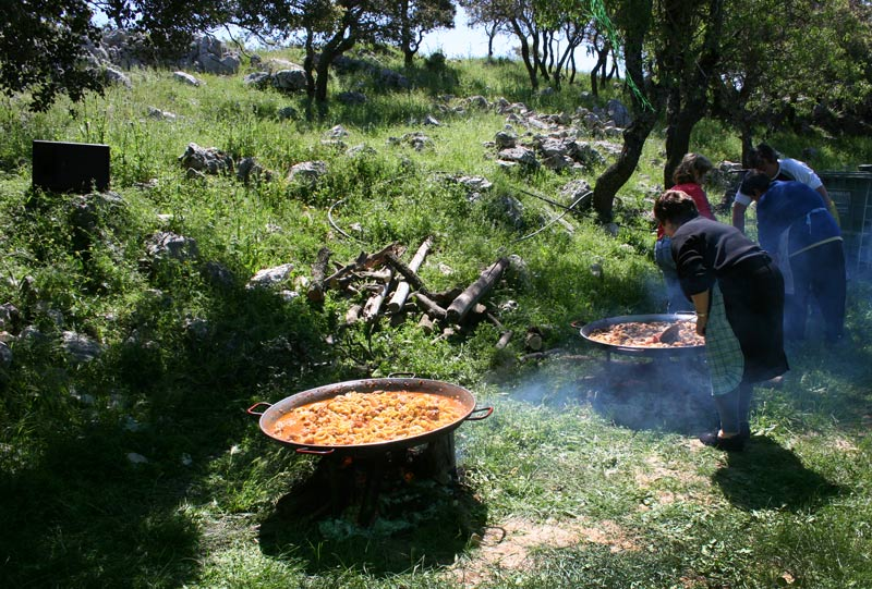Traditional Cooking of Paella in an orchard