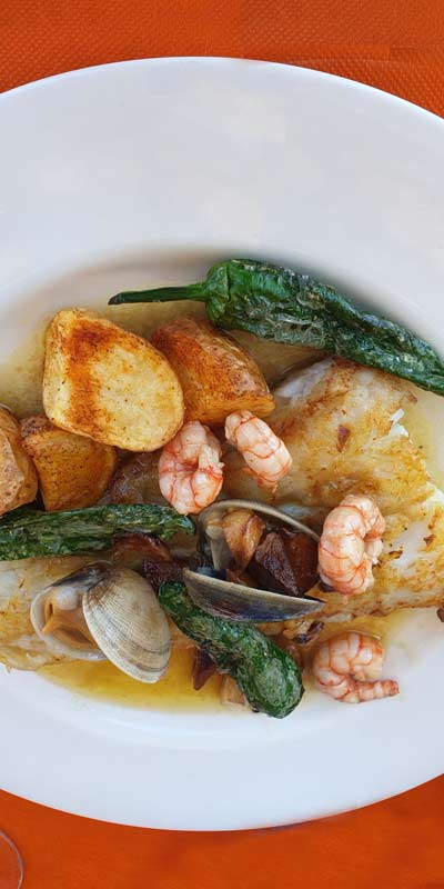 Spanish Weird Foods to Eat, Clams, Seafood