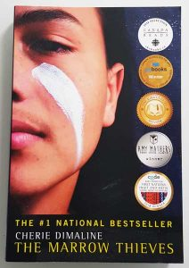 Canada's Best Books by First Nations Authors - The Marrow Thieves