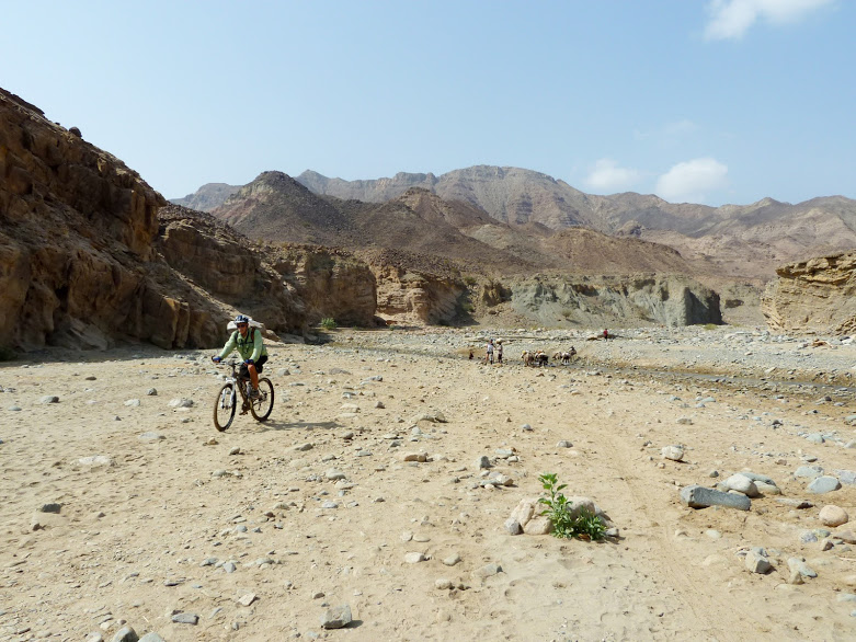 Extreme temperatures - Cycling in the Heat